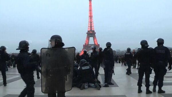 Nowe protesty we Francji - Sputnik Polska