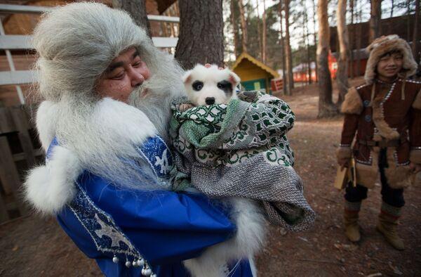 Jamał Iri z Salecharda niesie szczeniaka w prezencie dla Dziadka Mroza w czasie świętowania Urodzin Świętego Mikołaja w Wielkim Utiugu - Sputnik Polska