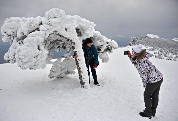 Zimowy odpoczynek na Krymie - Sputnik Polska
