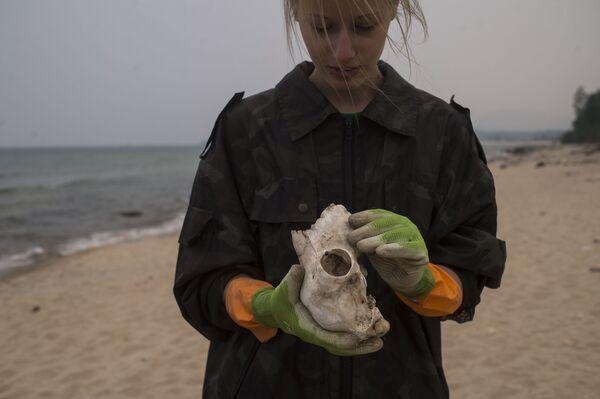Wolontariusze zbierają śmieci na brzegu jeziora Bajkał - Sputnik Polska