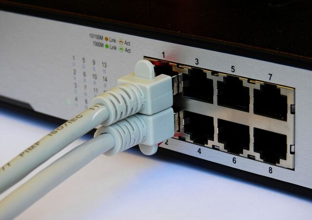 Dwa kable sieciowe