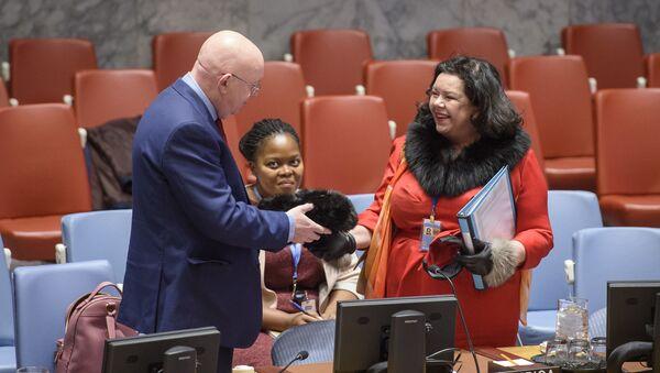 Stała przedstawiciel Wielkiej Brytanii przy ONZ Karen Pierce pochwaliła się swoją rosyjską czapką - Sputnik Polska