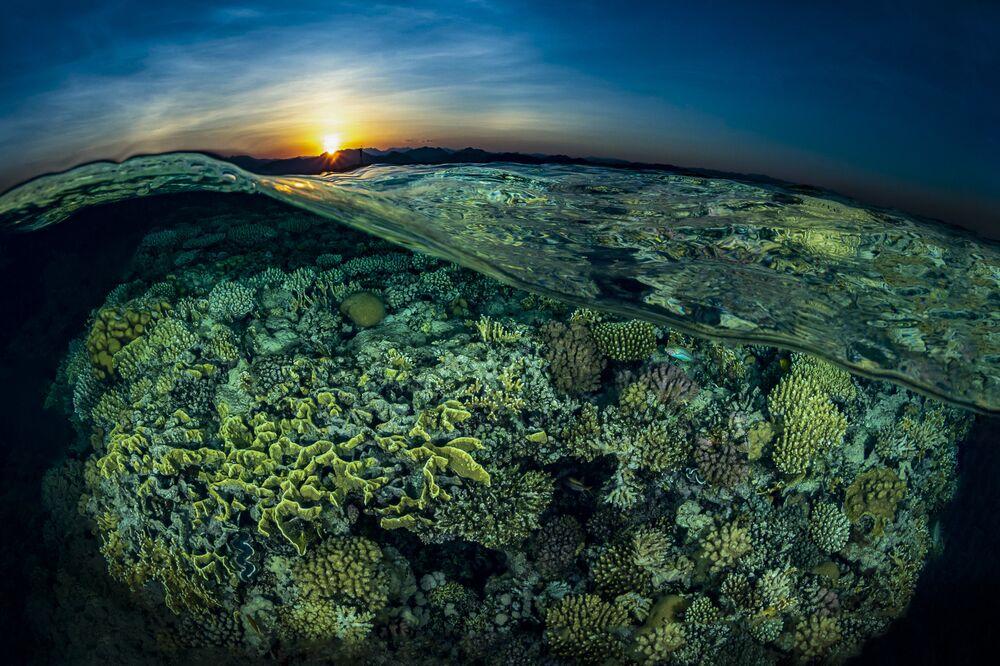 """Zachód słońca nad Rafą Gordona na zdjęciu pt. """"Sunsplit"""". II miejsce w kategorii Reefscapes w konkursie fotograficznym 7th Annual Ocean Art Underwater Photo Contest"""