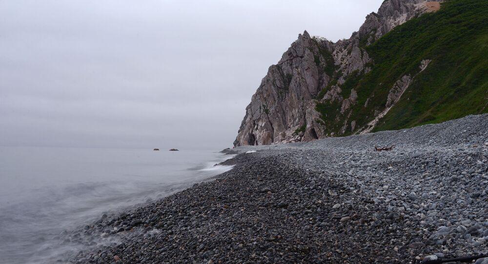 Zatoka Tasowa w Kraju Nadmorskim