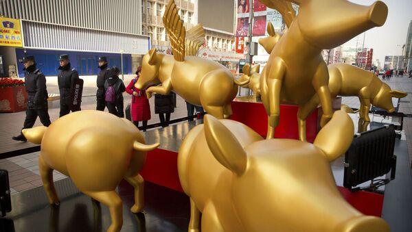Posągi złotych świnek z okazji obchodów Chińskiego Nowego Roku w Pekinie - Sputnik Polska