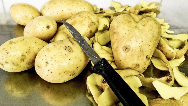 Obieranie ziemniaków - Sputnik Polska