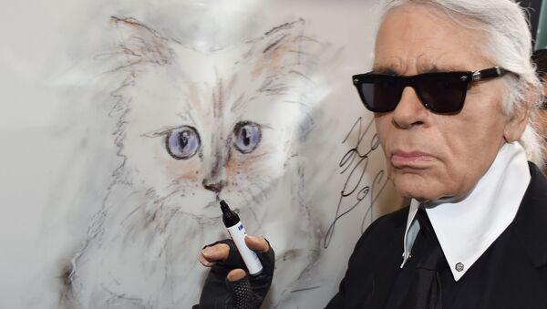 Fortunę Lagerfelda może odziedziczyć jego ukochana kotka - Sputnik Polska