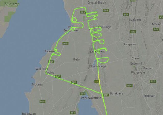 Pilot narysował w powietrzu dwa penisy