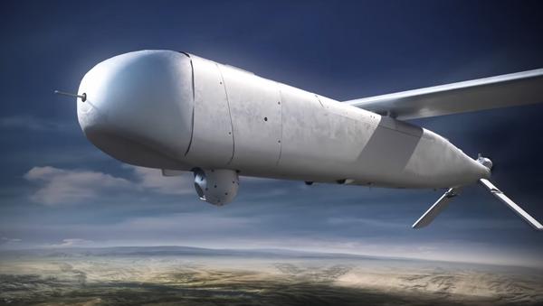 Izraelski dron Mini Harpy - Sputnik Polska