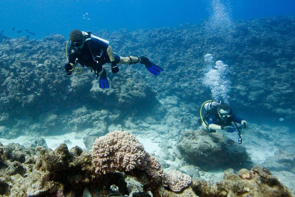 Nurkowanie w wodach archipelagu Maskarenów