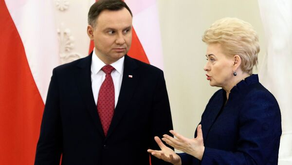 Prezydent Polski Andrzej Duda i prezydent Litwy Dalia Grybauskaitė - Sputnik Polska