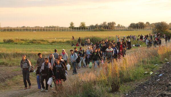 Uchodźcy na serbsko-węgierskiej granicy - Sputnik Polska